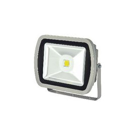 LED Floodlight 50 W 3500 lm Grijs