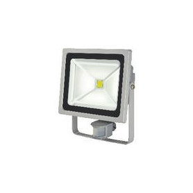 LED Floodlight met Sensor 50 W 3500 lm Grijs