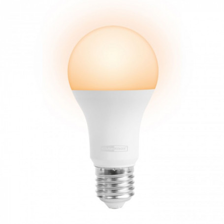ALED-2009 Draadloos dimbare ledlamp flame